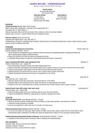 sample resume undergraduate