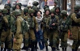 البرديني : الاحتلال الإسرائيلي يستبيح كل المحظورات والمحرمات وعلى رأسها حقوق الأسرى والشهداء والجرحى