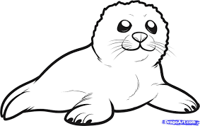 Small Picture Fresh Seal Coloring Pages 20 About Remodel Free Colouring Pages