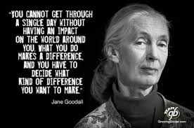 Jane Goodall Quotes Awesome Jane Goodall Quotes Image Quotes At Relatably 48 QuotesNew
