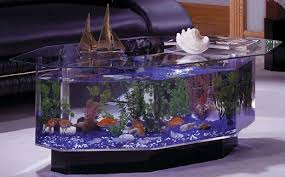 fishtank furniture. The Octagon Coffee Table Aquarium Would Make A Great Addition To Any Living Room By Bringing Touch Of Luxury And Aquatic Life. Fishtank Furniture