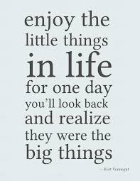 enjoy little things quote image