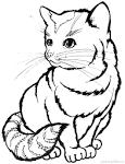 Игры для девочек раскраски котиков