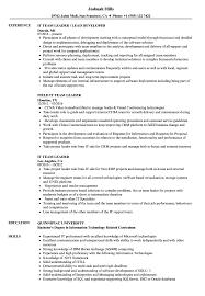 Team Leader Resume Examples It Team Leader Resume Samples Velvet Jobs