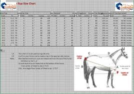 Charts Rug Size Chart Buy High Quality Horse And Pet