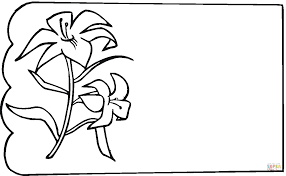 Lily coloring page | Free Printable Coloring Pages