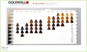 Goldwell Color Chart 5nn Best Picture Of Chart Anyimage Org
