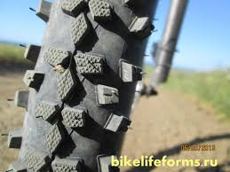 <b>Schwalbe smart sam</b> отзыв и обзор — BikeLifeForms