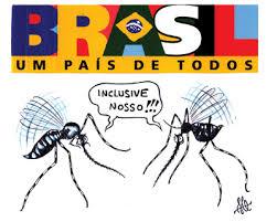 Resultado de imagem para dengue brasil