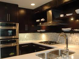 Dark Kitchen Cabinets Colors Elegant Ikea Black With Ideas