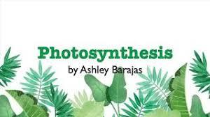 Digital Story Ashley Barajas - YouTube