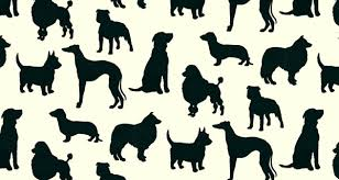 i love dogs wallpaper. Unique Love Speaking Of Dogs And Wallpaper No We Werent 600x320 In I Love Dogs Wallpaper D