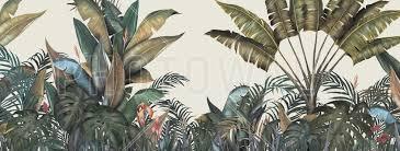 Tropical Fotobehang Behang Photowall Behang In 2019 Natuur