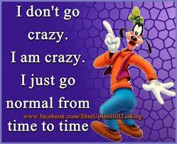 Goofy Quotes Mesmerizing Goofy Quote Crazy Quotes Pinterest Goofy Quotes Humor And