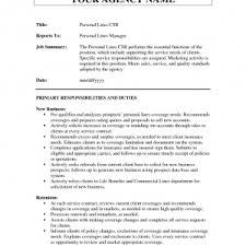 custom dissertation chapter ghostwriters for hire au resume for custom essay writing property claim representative resume screenprintbiennial com