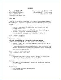 Best Career Objective Delectable Example Of Objective In A Resume Objective On A Resume Examples