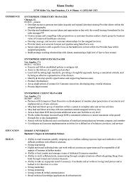 Enterprise Manager Resume Samples Velvet Jobs