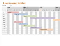 Four Week Project Timeline