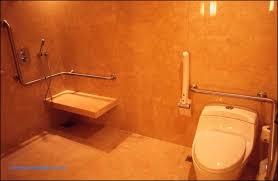 Bathroom Safety For Seniors Inspiration Bathroom Safety Rails 48 Luxury Toilet Aids For Seniors Ideas Toilet