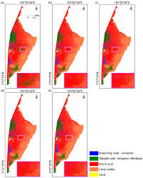 Coral Classification Chart Remote Sensing Free Full Text Coral Reef Mapping Of Uav