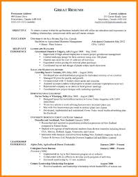 Resume Formatting Simple Good Beautiful Resume Formatting Free Template Format To At