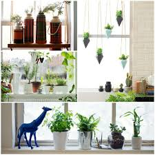 windowsill decoration room flowers potted window decorating