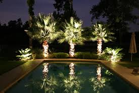 palm trees for elegant backyard with rectangular swimming pool and beautiful outdoor garden lighting ideas