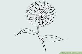 types of flowers drawing. image titled draw a flower step 17 types of flowers drawing