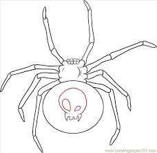 Small Picture W A Black Widow Spider Step 4 Coloring Page Free Spider Coloring