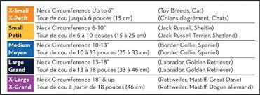 Kong Collar Size Chart Bedowntowndaytona Com