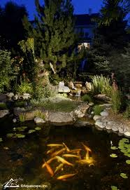 Pond lighting ideas Landscape Koi Pond With Underwater Lighting Aquascape Inc Pretty Backyard Lighting Ideas For Your Pond Waterfall Or Fountain