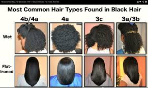 Black Natural Hair Types Chart Understanding Natural Hair Texture Porosity Density And