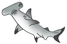 hammerhead shark clipart black and white. Contemporary Hammerhead Hammerhead Shark Clip Art For Clipart Black And White G