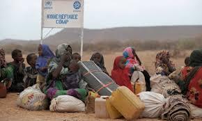 Image result for refugee camps