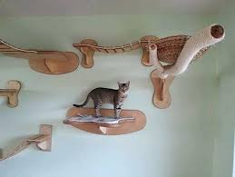 Corner Cat Shelves Log Shelves 100 Choose The Side You Want To Face Out And Be 86