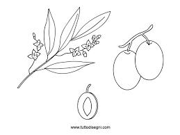 Olive E Foglie Da Colorare Tuttodisegnicom