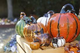 great glass pumpkin patch at palo alto art center