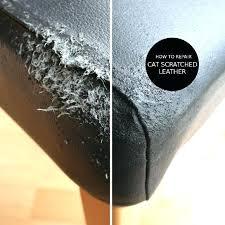 repair scratches in leather couch repair cat scratches on leather repairing cat scratches on leather furniture