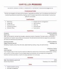 Sales Associate Resume Example Party City Detroit Michigan