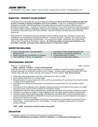 Executive Resume Templates 2015 Executive Resume Samples Format Assistant 2015 Mmventures Co