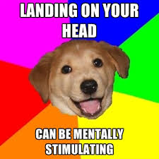 LANDING ON YOUR HEAD CAN BE MENTALLY STIMULATING ● Create Meme via Relatably.com