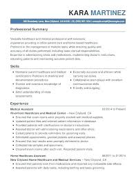Healthcare Resume Template Adorable Resume Objective For It Professional Healthcare Resume Examples