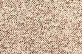 Berber Carpet in West Chester PA