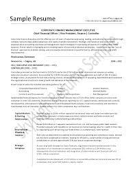 Cfo Resume Contemporary Resume Format Of Cfo Collection Documentation 28