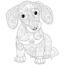 Poodle Coloring Pages Trustbanksurinamecom