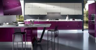 Bright Purple Super Modern Kitchen Design