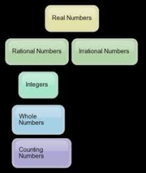 Hierarchy Chart Of Real Numbers Course 8th Math Real Numbers