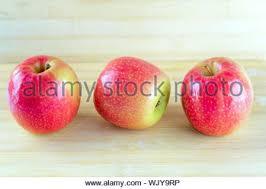 Drei Rote äpfel Christbaumschmuck Isoliert Auf Weißem