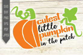 ✓ free for commercial use ✓ high quality images. Cutest Little Pumpkin In The Patch Svg Graphic By Mint And Beer Creations Creative Fabrica