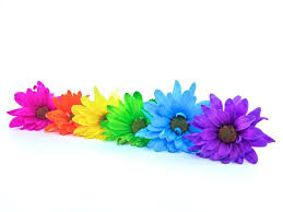colored pictures of flowers. Exellent Pictures Throughout Colored Pictures Of Flowers O